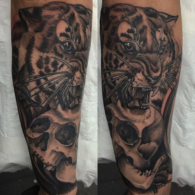 Neo traditional tiger and skull on the forearm thanks for Tiger forearm tattoo