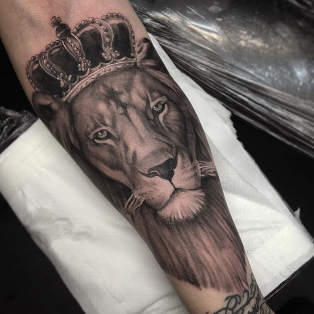 Lion King For Tattoo Bookings Email Jake St Tattoo Thank You