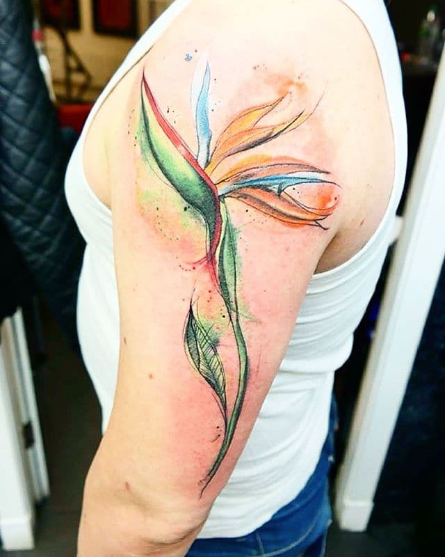 Done today ! naiomitattoo studioxiii watercolorart watercolor flowerstattoo flowers @eternalink @insigniatattoo @thinkbeforeuink @tattooselection @equilatteratattoo @skincolorforlife @tattoolifemagazine @best_tattoo_artists @equilattera @equilatteratattoo @watercolor_art @watercolortattoos