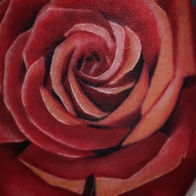 ️ AWAY ON HOLIDAYS FOR A WEEK!!️ edinburgh edinburghtattoos scotland ink inked inkaddict tattoo tattoos tattooer tattooed tattooist tattooshop tattooworkers tattooing tattooink cheyenne roses rosetattoo studioxiii instatattoo tatted tattooartist flowers newtattooworkers tattoolove followme follow supportgoodtattoers