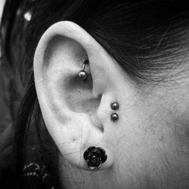 Double tragus and rook done yesterday. Still a bit bloody but it&039;s too good not to post! studioxiii stxiii studioxiiigallery earpiercing earpiercings tragus traguspiercing rook rookpiercing piercingsofinstagram piercersofinstagram edinburghpiercer edinburgh scotland titanium doublepiercing