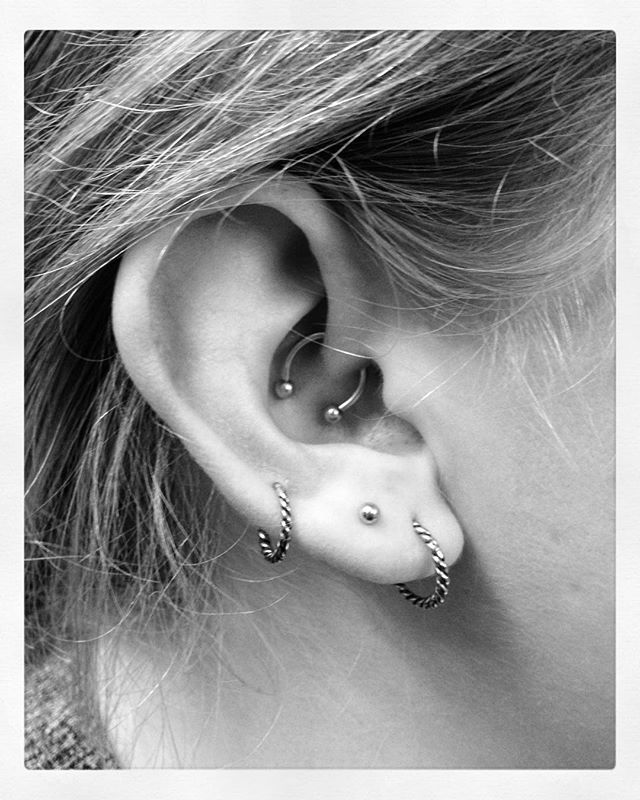 The ear of my dear sarah lou with some piercings that i for Tattoo lous piercing prices