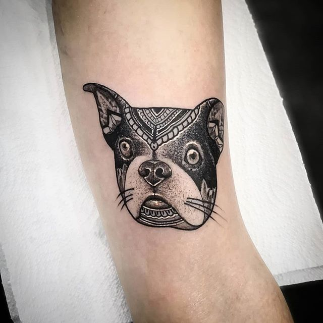 Made my clients frenchbulldog into a blackwork mandala tattoo here at the Fribourg & tattoo convention.... . . .For those of you that don&039;t know anytime I do one of my cats or other animals they&039;re always based off of the clients own pets which makes these tattoos that much more enjoyable :) . . .Swipe to see her actual dog :) . . studioxiii  kingpintattoosupply whip  dotwork stipple miamitattoos  miamitattoo southbeach tattoos wynwood miamitattooartist tat ink inked  guyswithtattoos girlswithtattoos besttattoos  uktattooartist Miami blackworkerssubmission . . @sullenclothing @hushanesthetic @hatchback_irons @kingpintattoosupply @allegoryink @inkedmag @totaltattoo @tattoolifemagazine @tattooartistmagazine @tattoosnob @tattoodo @tttism @blackworkers @blackworkers_tattoo @uktta @darkartists @skinart_mag @tattoo.artists @theartoftattoos @dermalizepro @tattoosmart @tattoo_composition @tattooloversshop @statt_girl @blacktattooing @hyraw_clothing @inkedsociety88 @skinart_collectors @tattoo_collector @the.best.tattoo.page @tattooloveart