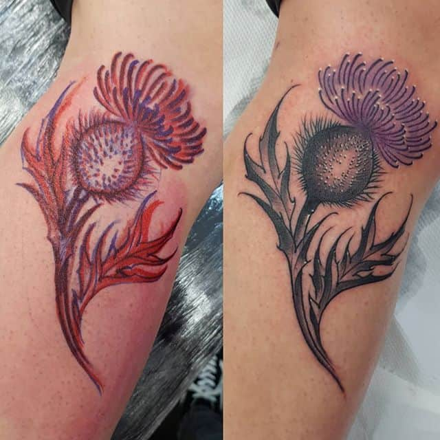 Freehand Scottish thistle. would love to do more like this please . . . . . . . . татумосква татуировка татуировки татумастер inkpplcom moscowtattoo tattooinrussia tattoos tattooidea tattooinspiration tattoonz blackwork tattoosnob neotraditionaltattoo neotraditionaltattoos new newschooltattoo newschool comic realism black backtattoos colourful colourtattoo edinburghtattoo newzealand studioxiii nztattooartist tattooedinburgh