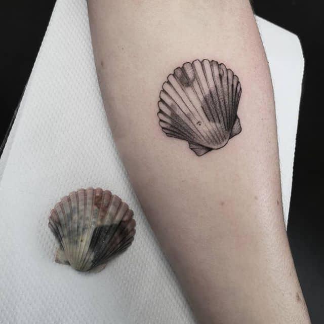Very fun request! Thank you!:) studioxiii besttattoos seashells seashell finelinetattoo fineline edinburghlife uktattooartist uktattoo uktta wowtattoo wheretheytatt ta2 igersedinburgh newtattoo tattooideas tattooinspiration realismtattoo realistictattoo tttism tattrx tattoostyle tattoolifestyle smalltattoos smalltattoo inkdup