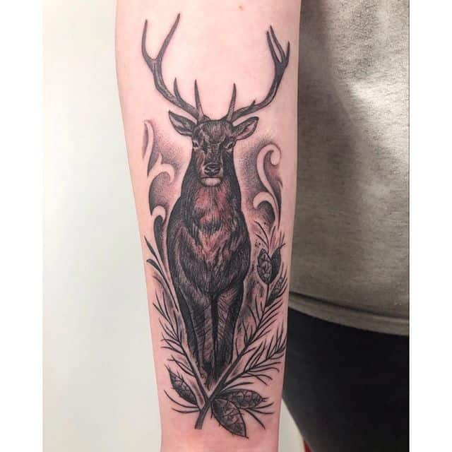 Thank you for today, Michelle ma wee deer 🦌🤘 reddeer stag stagtattoo blackngrey blackandgrey studioxiii studioxiiigallery