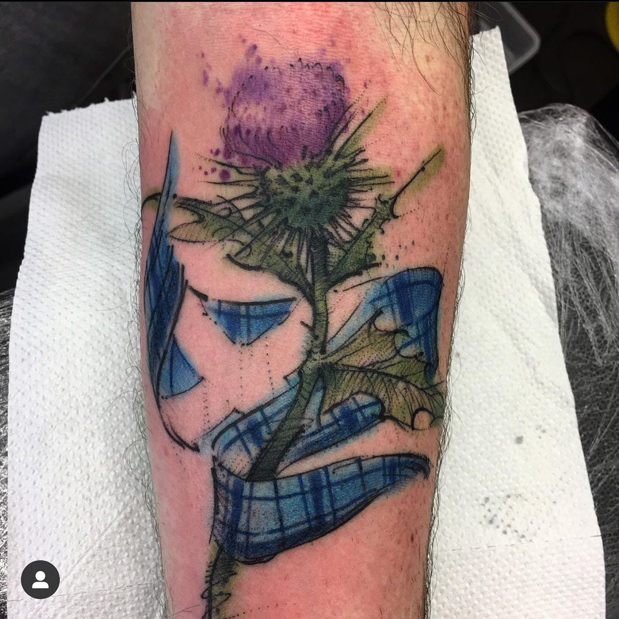 It wouldn't be a residency without a thistle. @manny.tattoos showing us his epic take on the country classic! ————— ————— uktattooartists uktattoo inked inkedmag skinart skinartmag traditionaltattoo tradworkers colourtattoos scotland edinburghtattoo edinburghlife scotlandtattoo uktta oldschooltattoo fineline cleanwork inkdup inkd skindeep performer besttattoos blackclaw girlswithtattoos uktattoosupplies blackclaw solidink sailorjerry blackclaw starbritecolors studioxiii @barber_dts @easytattoo_uk @eternalink @dynamiccolor @lockdownneedle @stencilstuff