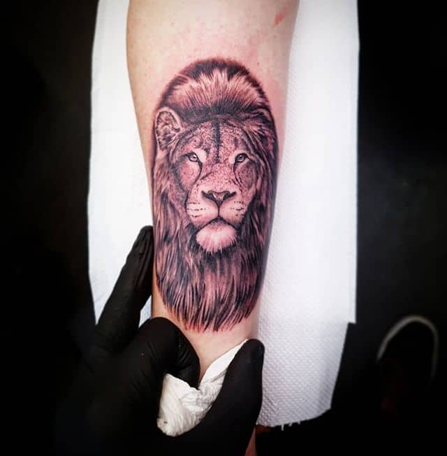 🦁 . . . . . tattoo smalltattoo girlswithtattoos lion liontattoo studioxiii tattooartist tattooartistuk edinburgh ink tattoos inked tattooed picoftheday art love pic photooftheday photo blackandgrey blackngrey instagram artist design tattooer