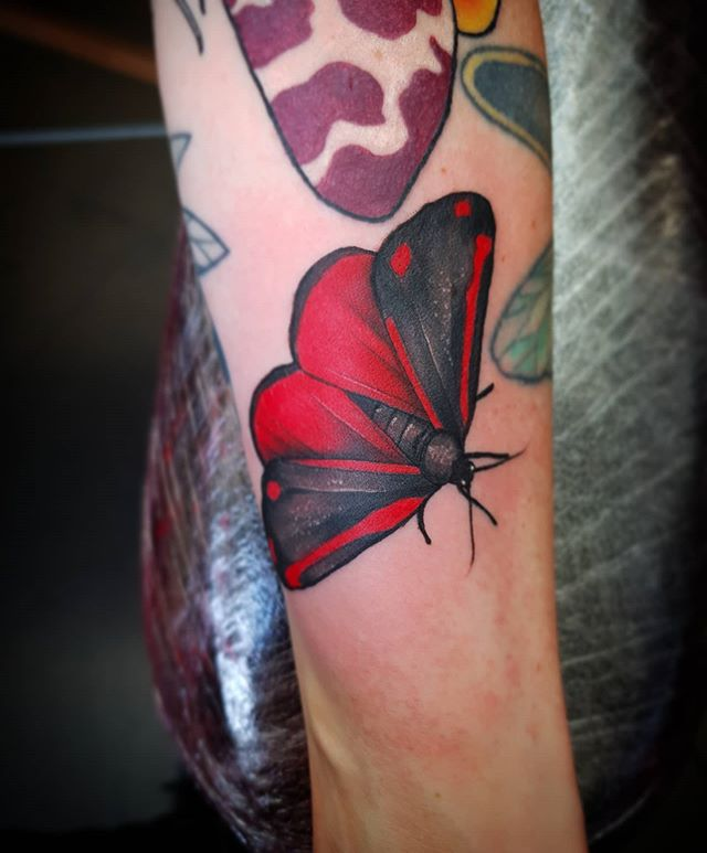 Cinnabar Moth for @sarah_gregory13 *paid for with toilet paper* 🧻🧻🧻🧻🧻🧻🧻 __________________________________ tattoo moth cinnabarmoth edinburghtattooartist studioxiii tattooartist tattooartistuk edinburgh ink tattoos inked tattooed picoftheday art love pic photooftheday photo blackandgrey blackngrey instagram artist design tattooer