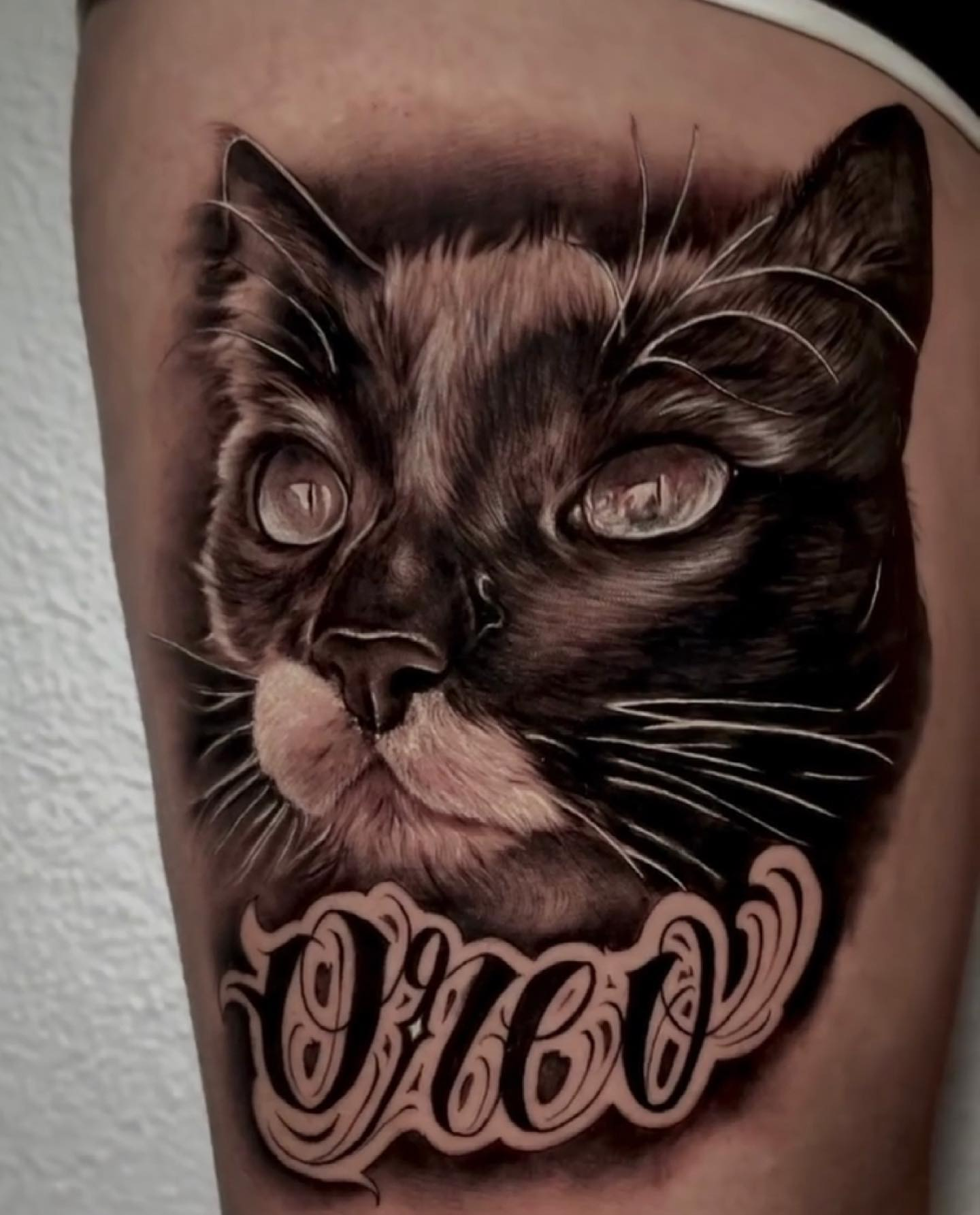 Incredible cat portrait from youngcaviartattoo 🙀 • Omar will be back with us from the 13th of May and has some space towards the end of June! For all enquiries, please contact either Omar himself or the shop through the enquiry form. Link in bio ✨ • •